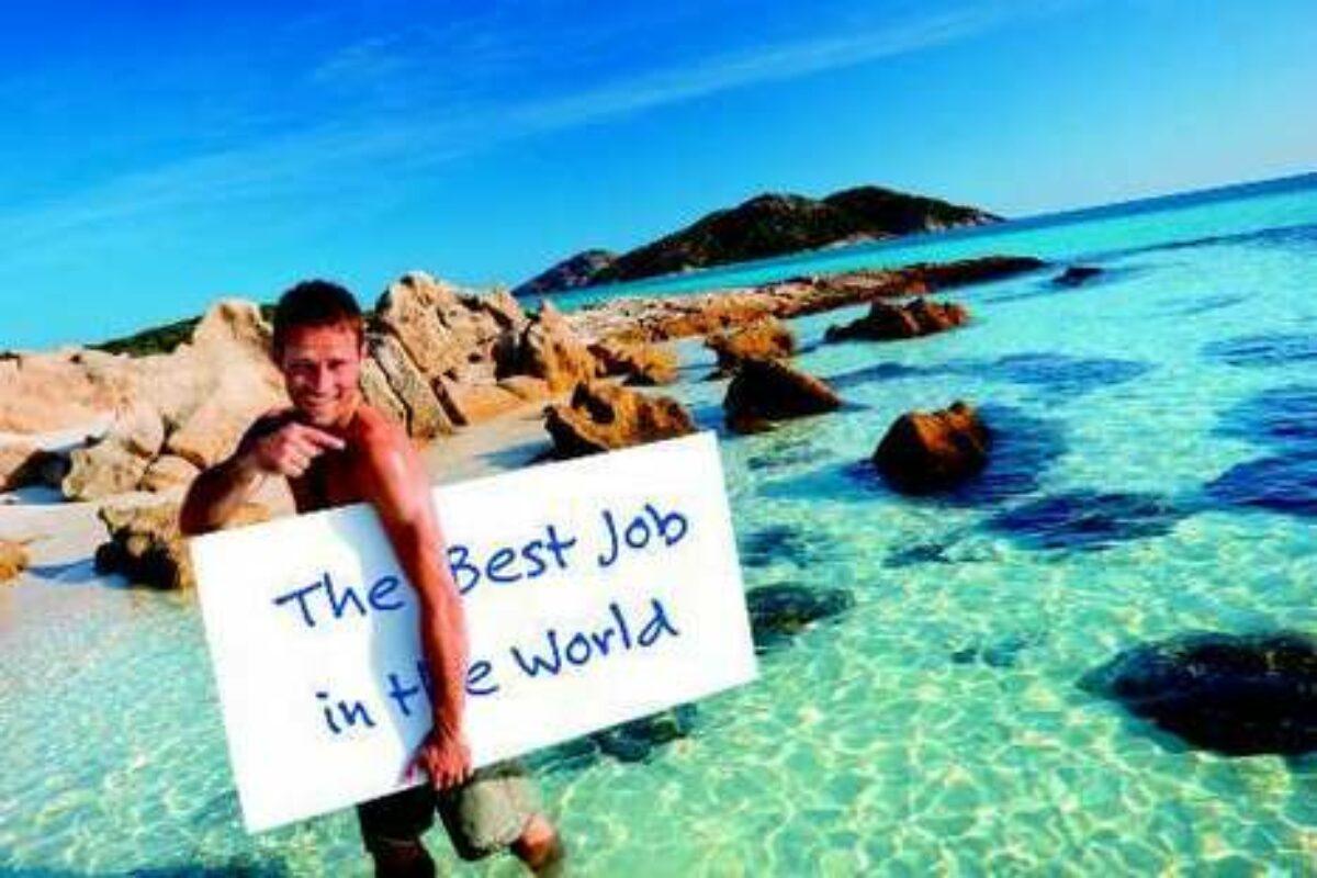 Le meilleur Job du monde