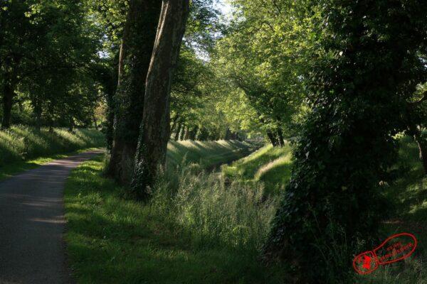 Parc le long du canal de Bourgogne à Pouilly-en-Auxois