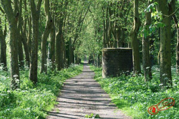 Promenade au dessus du tunnel canalisé de Pouilly-en-Auxois