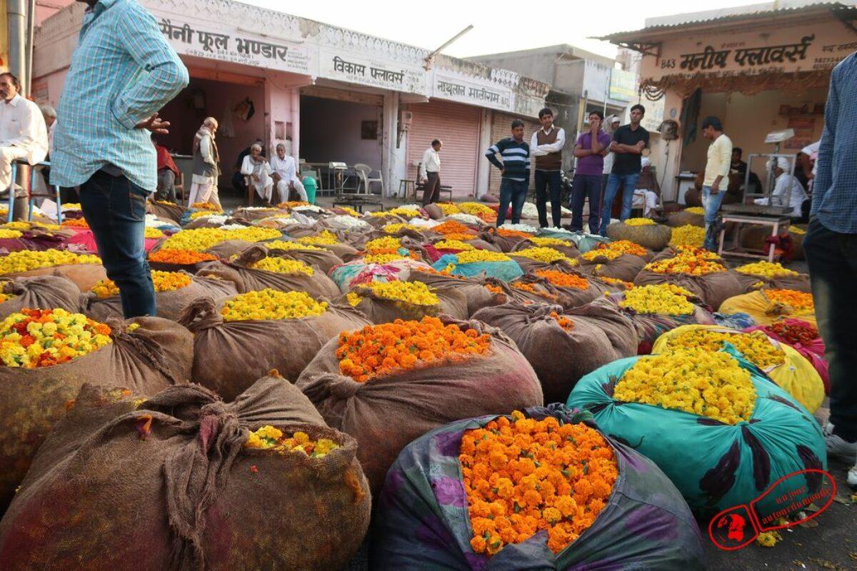 2e jour à Jaipur