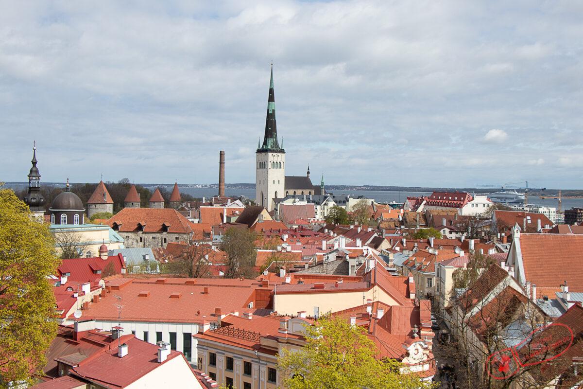 Découvrir Tallinn et Tartu en Estonie